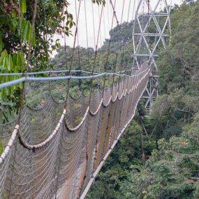 Tour Rwanda, visit Rwanda, Rwanda tour, Rwanda gorilla tours, Rwanda gorilla safaris, Gorilla trekking trips in Rwanda, Rwanda safaris