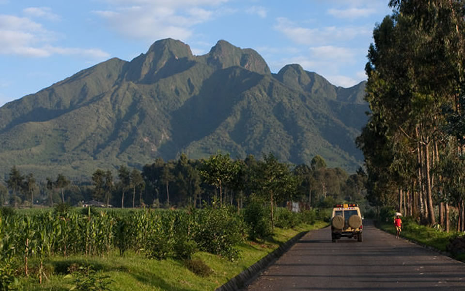 Volcanoes National park, Tour Rwanda, visit Rwanda, Rwanda tour, Rwanda gorilla tours, Rwanda gorilla safaris, Gorilla trekking trips in Rwanda, Rwanda safaris