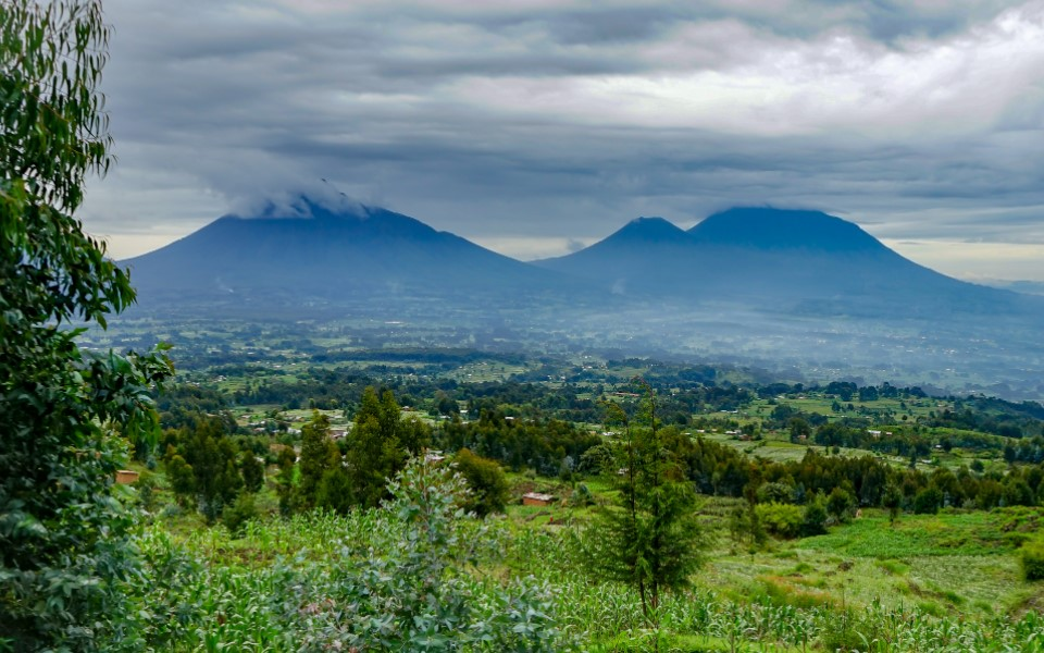 Volcanoes national park is the star destination in Rwanda famous for gorilla trekking safari packages. Tourists going to Rwanda for destination feel this thrilling activity in Rwanda that has been regarded as a life-changing adventure